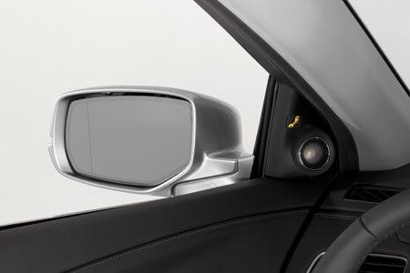 RLX Mirror