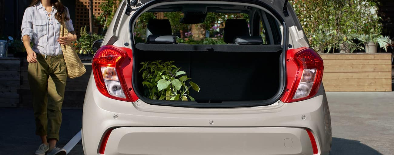The cargo space on a white 2020 Chevy Spark is shown with a plant in it in Indianapolis, IN.