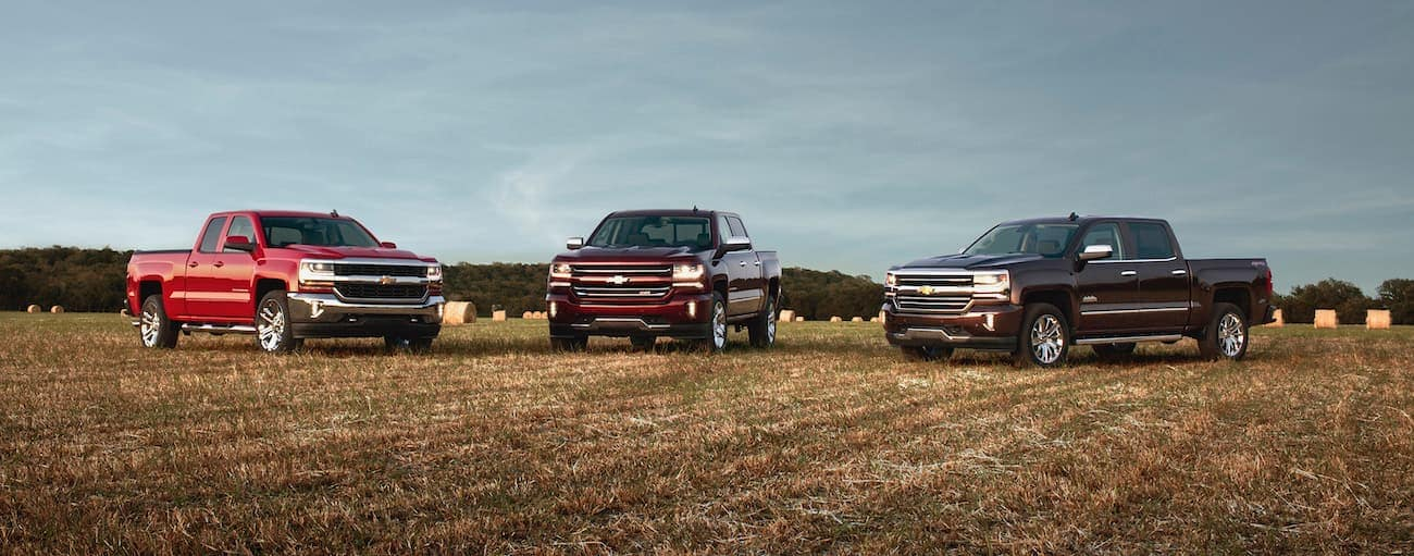 Three 2016 Used Chevrolet Silverado 1500s are parked in a field.