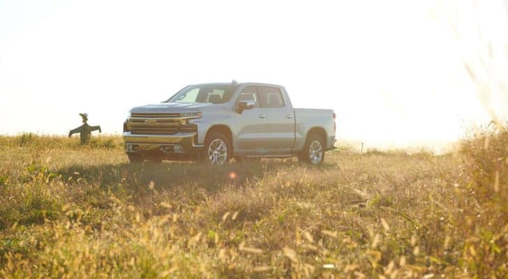 A silver 2021 Chevy Silverado 1500 Z71 is shown parked in a field next to a scarecrow.