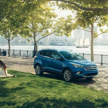 2018 Ford Escape in a Park