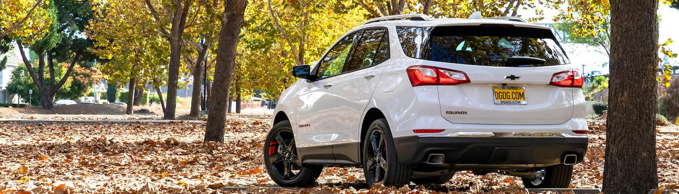 DGDG 2021 Chevy Equinox white rear exterior in woods