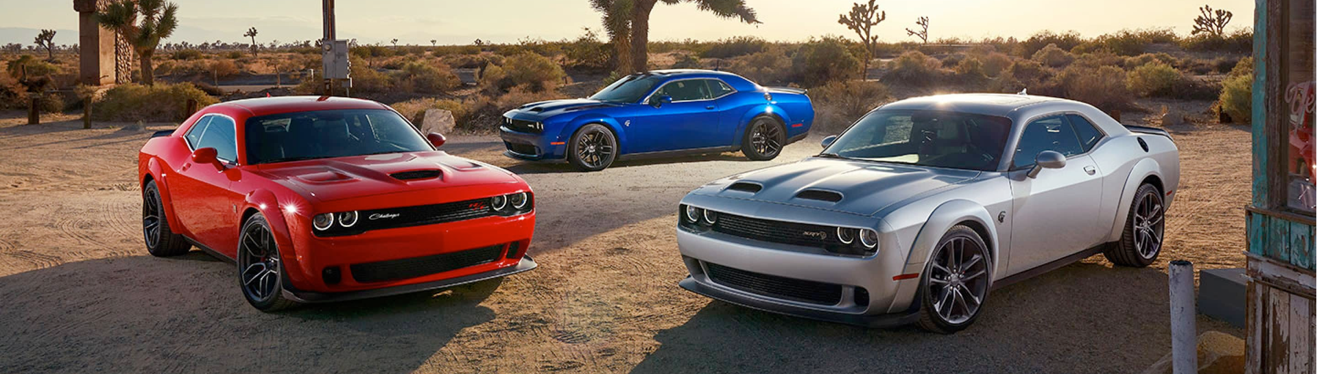 2021 Dodge Challengers on a dirt road.