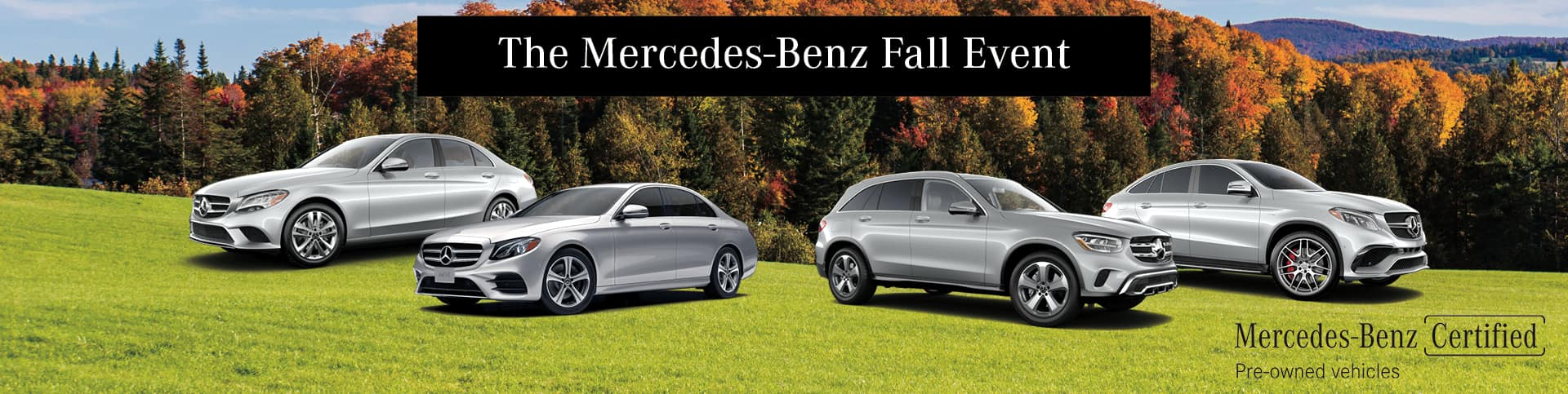 THE MB FALL PRE OWNED IMAGE