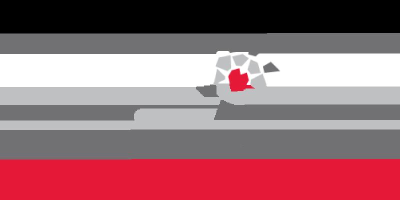 Camp Odayin logo