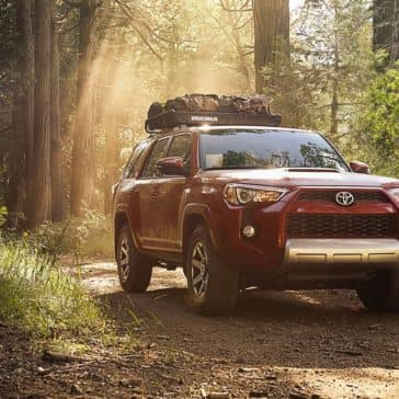 2018 Toyota 4Runner woods