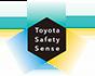 TSS Logo 2