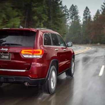 2019 Jeep Grand Cherokee in a rain-swept forest