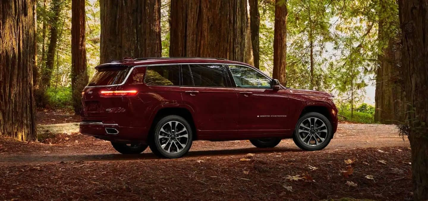 Jeep Grand Cherokee L in forest