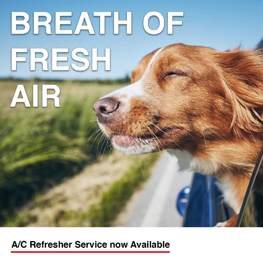 A/C Refresher Service now Available