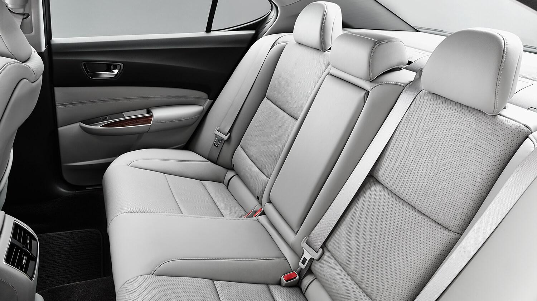 Back Seat Interior