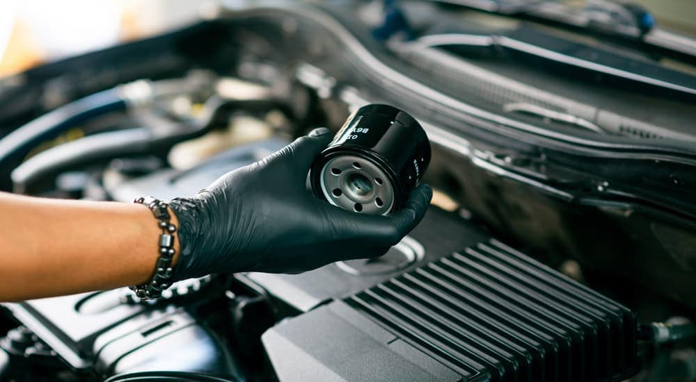 A gloved hand is holding an oil filter up during an oil change service.