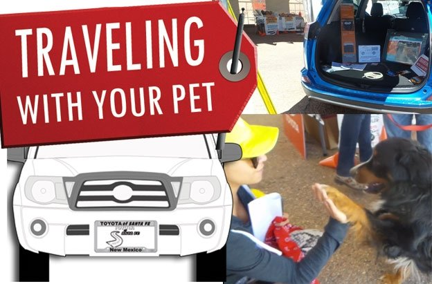 Traveling with Pets and Pets Capades