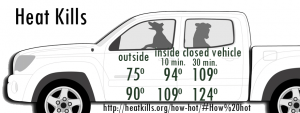 Don't Leave Pets in Hot Car