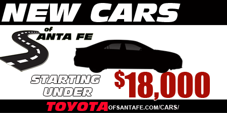 New Cars of Santa Fe Starting under $18000 special with website