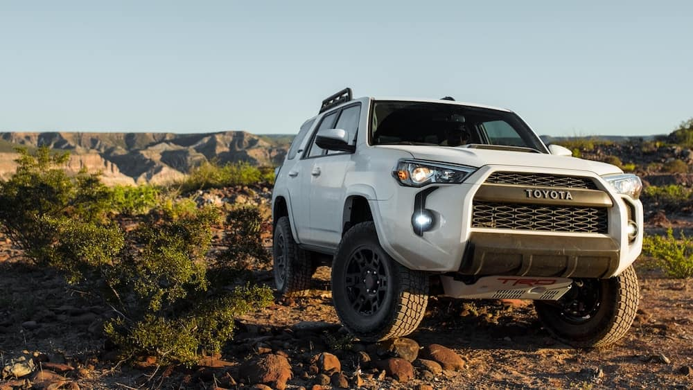 2019 Toyota Rav4 Vs 4runner Midsize Vs Compact Suv